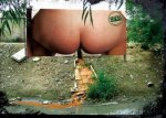 billboard_peeing_environment